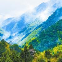 森林资源保护专业