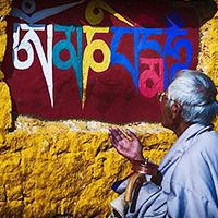 藏语文专业