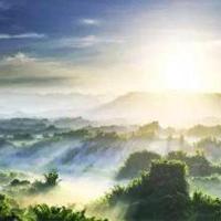 森林生态旅游专业