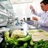 食品生物工艺专业
