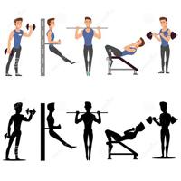 健身健美专业