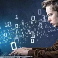 软件与信息服务专业