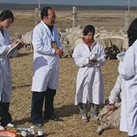动物防疫与检疫专业