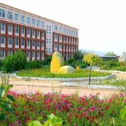 尚义职教中心