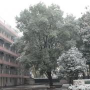 武汉凡谷电子职业技术学校